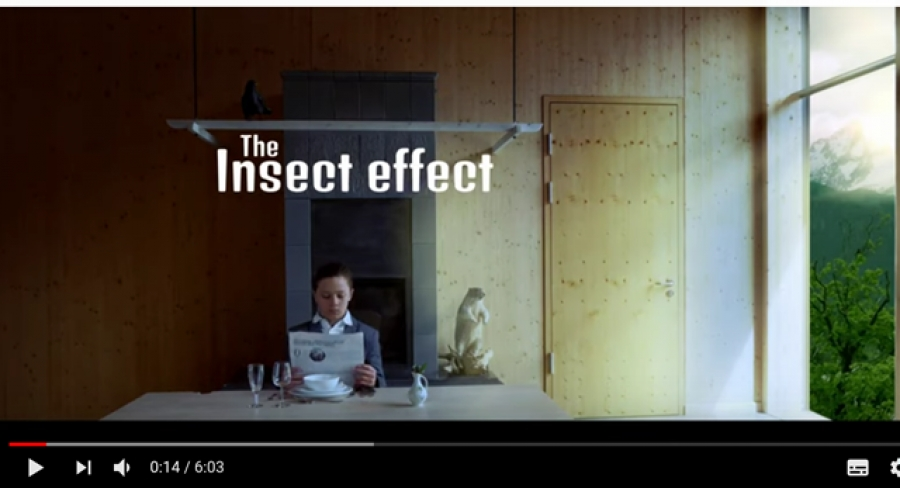 "YOUrALPS film ""The Insect effect"" awarded at the REC-Filmfestival Berlin"